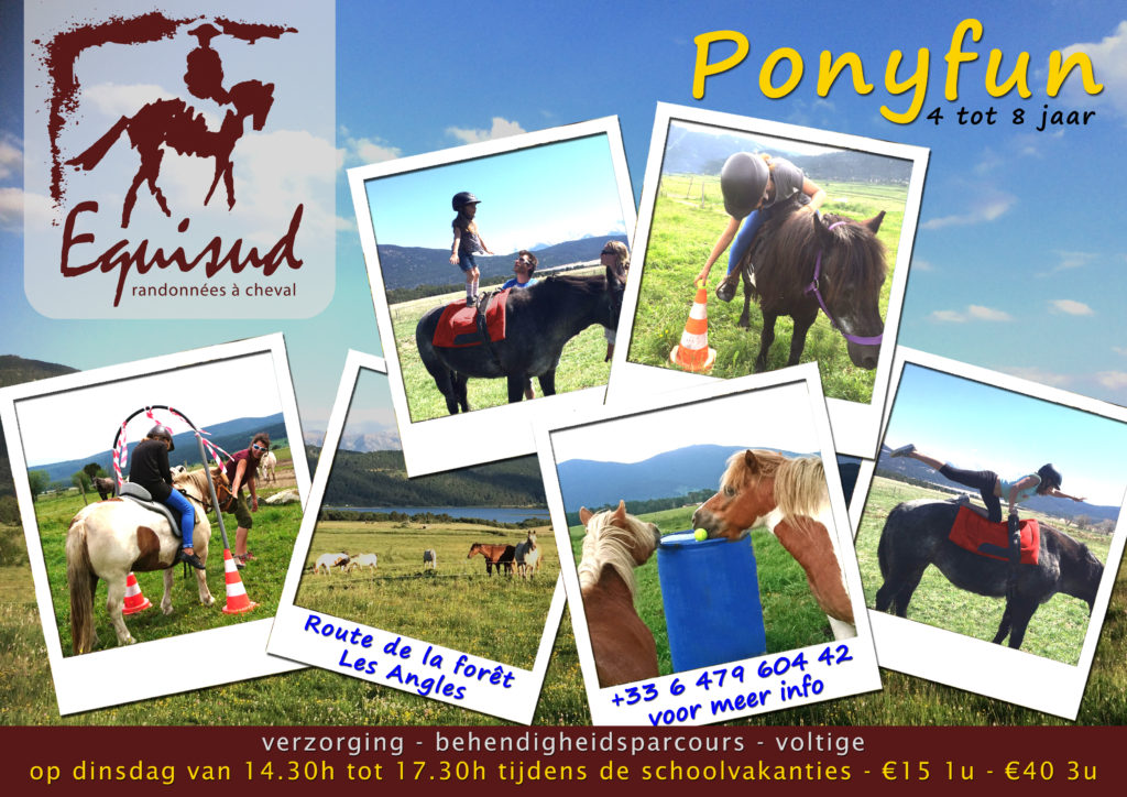 ponyfun nl copy